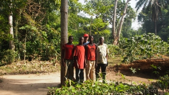 wir stehen zusammen mit Moïse und seinen beiden Söhnen zwischen jungen Bäumchen, welche ausgepflanzt werden sollten