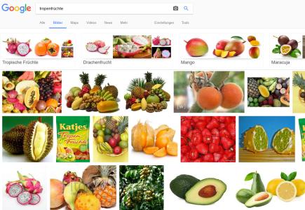 Google Bilder Tropenfrüchte