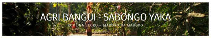 Header Agri Bangui
