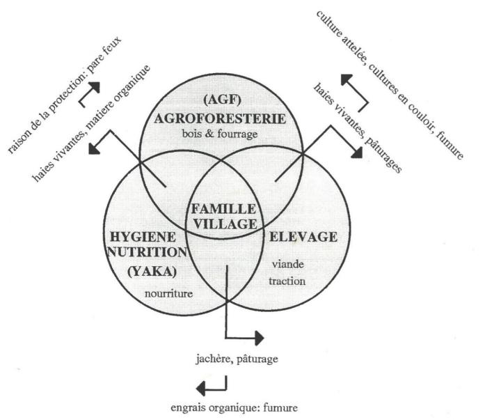 Système intégré