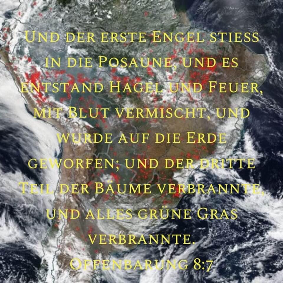 Amazonas mit Bibeltext
