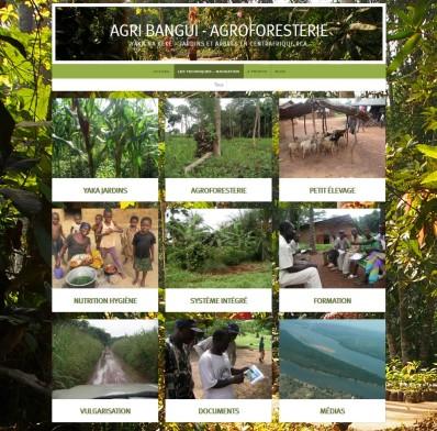 Bild Agribangui Portfolio