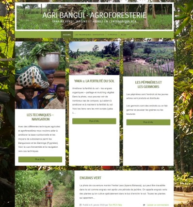 Bild Agribangui Webseite